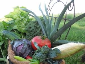 VegetableBasketCloseUp6_090912