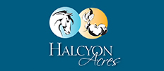 Halcyon Acres