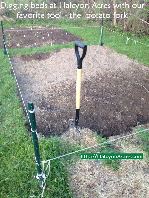 Find seed starting tips at http://RoanokeRevealed.com