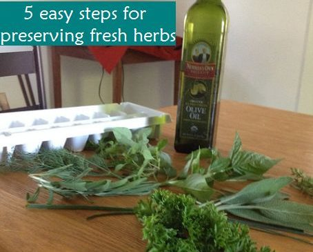 5 easy steps for keeping fresh cut herbs tasty for months