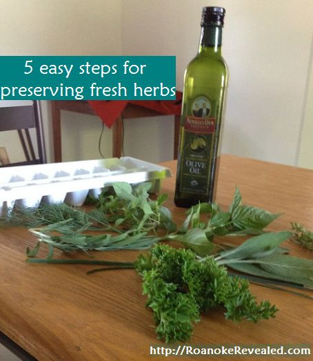 Enjoy fresh herbs year round with tips at http://RoanokeRevealed.com