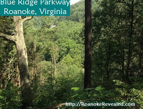Roanoke's Blue Ridge Parkway