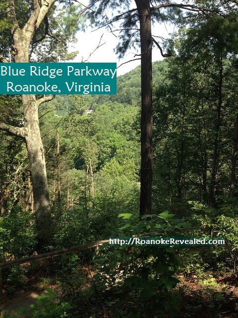 Find great Roanoke attractions at http://RoanokeRevealed.com