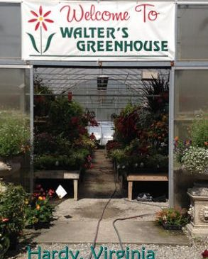 Walter's Greenhouse in Hardy, VA