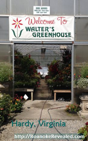 Fun Roanoke destinations for vistiors and locals include Walter's Greenhouse. Find out more at http://RoanokeRevealed.com